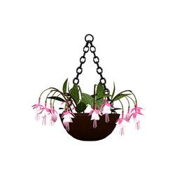 Fuchsia flower basket