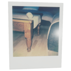 Polaroid Table FP