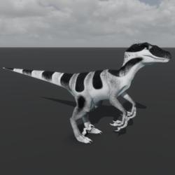 Raptor Avatar - Black & White Gecko