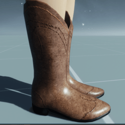 Cowgirl Boots POLISHED