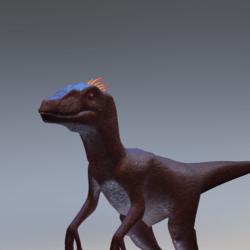 Red Raptor Avatar