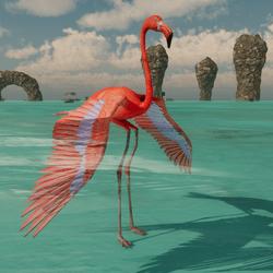 Flamingo Avatar