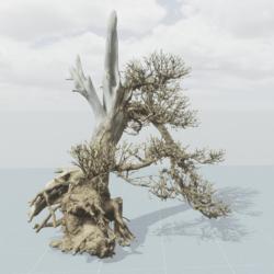 Dead Tree 9