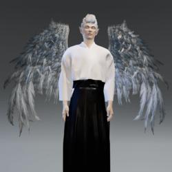 TKA Wings Man