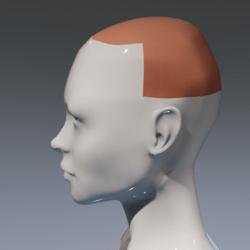 Scalp for Irene Head dry skin version