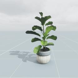 Pot Plant Large 1