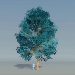 Maple Tree Blue 2