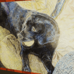Drawing of a Black Labrador Holding a Tennis Ball