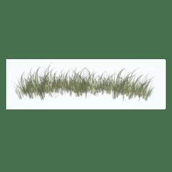 Grass Border 3