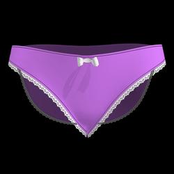 Silky Dreams Lace Underwear 04