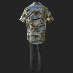 ACE VENTURA   OUTFIT_ B