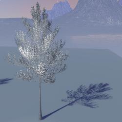 Magiku tree monochrome