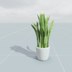 Pot Plant Medium