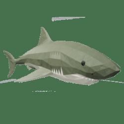 Downward Shark