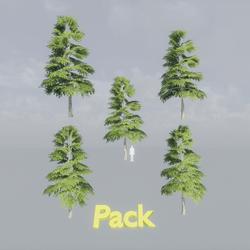 Fir Tree Pack