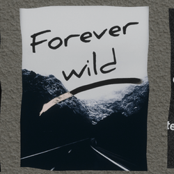 forever wild wall poster