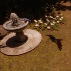 Kolibri mit Animation 2 update