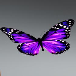Glowing Animated butterfly pet purple [Earing slot]