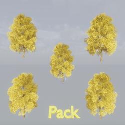 Maple Tree Pack Yellow