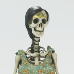 Skeleton female