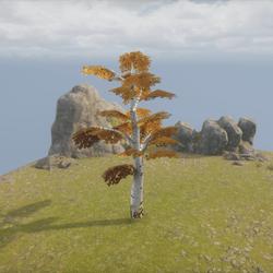 Birch Tree - Simpe Small Tree ++ Einfache Birke
