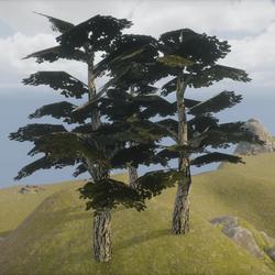 Dark Tree - Set of 3 Trees ++ Dunkler Baum 3er Set