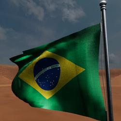 TKA Animate Flag Brazil
