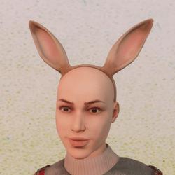 Rabbit erars