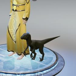 raptor pet left