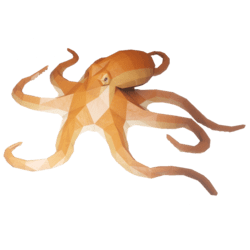 Hovering Octopus