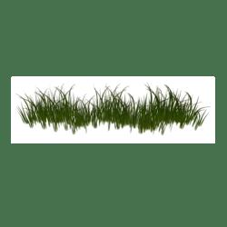 Grass Border 1