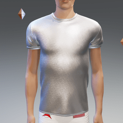 Silver Athletic Shirt - Male