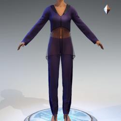 Sheer Tunic Suit - Purple Wool