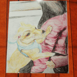 Drawing of a Chihuahua - Wall Art