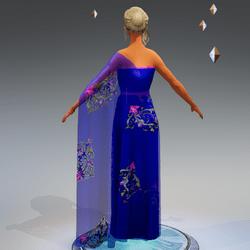 Sari Gown #2