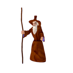 Wizard from the Magic Forest