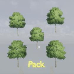 Oak Tree Pack