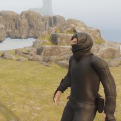 The Ninja Guard