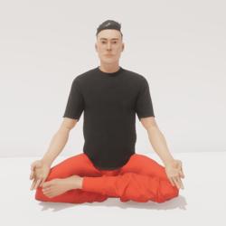 meditation 10 harmony male