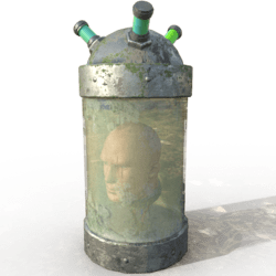 Animated conservated head