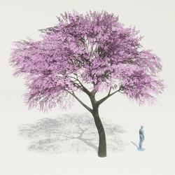 Skye Sakura Tree
