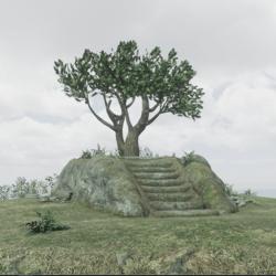 Druid Hill