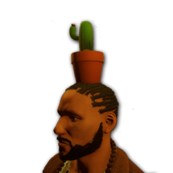 Cactus pot for male