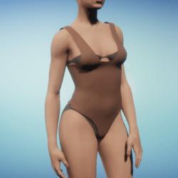 Light Nude Coloured Bodysuit