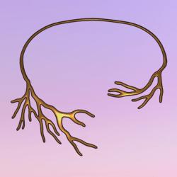 Bare Tree Choker Gold