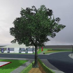 TKA Tree M1