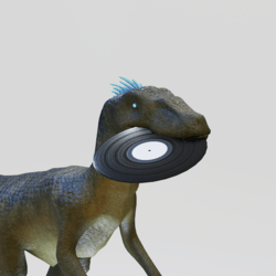 RaptorFit Record