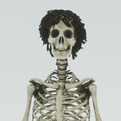 Skeleton male