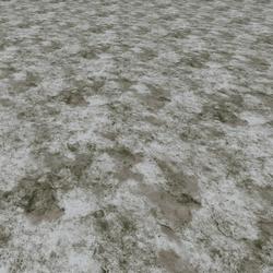 Mud Snowy Grass