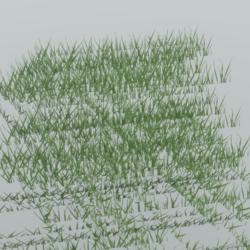 Realistic Grass T1